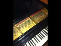 Piano Tuner Alexander Arkansa 501-747-1870
