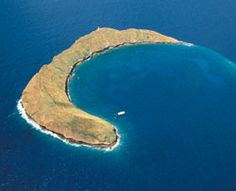 Molokini Crater...Snorkeled here. Amazing!