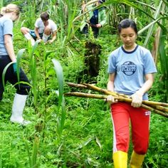 United Planet offers volunteer abroad opportunities in countries, immersing you in local culture as you do your part to create a global community. Volunteer Abroad, Global Citizen, Volunteers, Non Profit, The Fosters, Respect, Planets, Challenges, The Unit