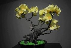 Bonsai de papel, creatividad!
