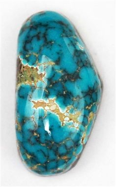 NATURAL DENDRITIC LONE MT. TURQUOISE CAB 8.8 cts $440.00