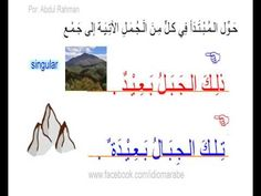 Idioma Árabe - nivel 4 - lección 06