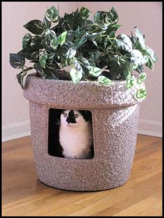 This Stonecoat Hidden Litter Box has the look of luxurious pottery and is justifiably the most attractive litter box of today with its hand