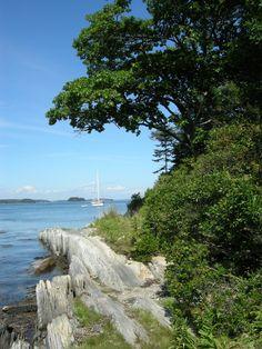 The Maine Coast