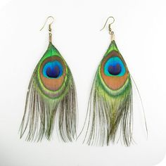 Simple peacock feather earrings