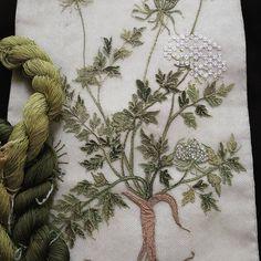 """""""Mi piace"""": 4, commenti: 2 - Paola Matteucci (@embroidery.laricamatrice) su Instagram: """"Ricamo con sete policrome. Tinte vegetali #ricamo#embroidery"""""""