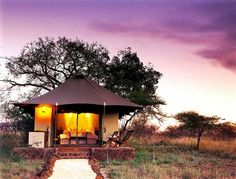 Safari Tent at White Elephant Lodge in KZN