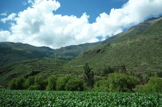 Landscape II in Sacred Valley, taken from the car.