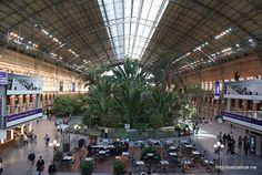Massive indoor garden