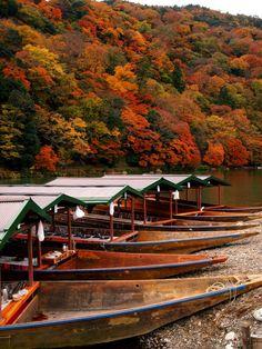 Autumn ~ Japan