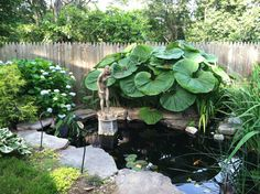 Cant wait for my new pond!! We have everything.. now for a free day!