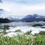 San Carlos de Bariloche, Province of Rio Negro Picture: Lake view from Victoria Is. - Check out Tripadvisor members' candid photos and videos of San Carlos de Bariloche Patagonia, Winter Pictures, Travel Info, Lake View, Best Vacations, South America, Trip Advisor, To Go, Mountains