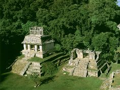 aztec jungle - Google Search