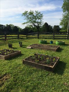 Raised garden beds and truck tire beds