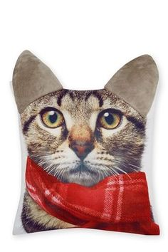Buy Cat Wearing Scarf Cushion from the Next UK online shop