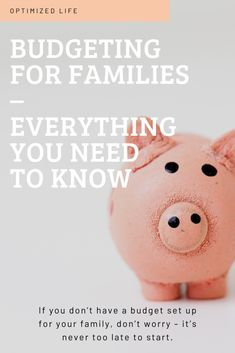 Budgeting for Families – Everything you Need to Know to save money with a family. Excel Budget, Budget Spreadsheet, Budget Binder, Living On A Budget, Family Budget, Save Money On Groceries, Ways To Save Money, Getting To Know You, Need To Know