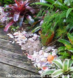 Shells along a garde