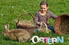 Mit Kids-Aktionstagen, Kochstudio und Tagesfahrten vertreibt das Team des Kinder- und Jugendbüros der Stadt Duderstadt Schülern während der Osterferien die f...