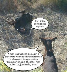 Doberman dog humor
