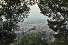 La Buhardilla de Yaya: Alhambra arropada