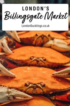 London's biggest fish market where you'll find the freshest seafood and the best prices. #london #markets #seafood Fresh Seafood, Fish And Seafood, Prawn Farming, Stratford Station, First Come First Served, London Boroughs, Types Of Fish, Sea Bass