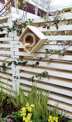 Using lines in the garden. Add climbing tendrils to a structural fence to soften the harsh horizontal lines. Diamond shaped bird boxes add to the effect