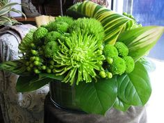 Green Flower Arrangements for St. Patrick's Day - First Come Flowers