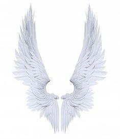 White Wings, Black Wings, Angel Wings Png, Lucifer Wings, Zentangle, Angel Artwork, Wings Drawing, Angel And Devil, Angels And Demons