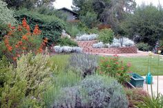 20 Landscaping Trends for 2017