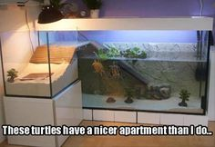 Funny Pictures of The Day ( 10 November 2015) source: Dumpaday
