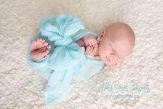 Newborn baby boy, blue Ashley Sargent Photography