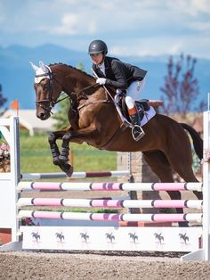 Kerrits™️ Show Jumping horseback riding outfit ideas. Featuring white Crosso… Kerrits™️ Show Jumping horseback riding outfit ideas. Eventing Show Jumping Outfit Riding Hats, Horse Riding, Riding Helmets, Equestrian Outfits, Equestrian Style, Show Jumping Horses, Horseback Riding Outfits, English Riding, Beautiful Horses