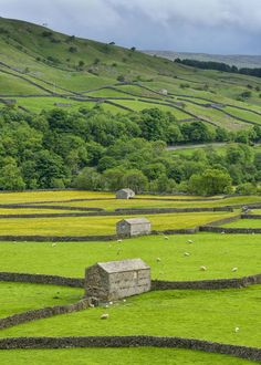 Barns and buttercups at Gunnerside 14 pictures of Yorkshire that are so beautiful it hurts - http://countryliving.co.uk