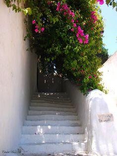 Tunisia, Sidi Bou Said ♥