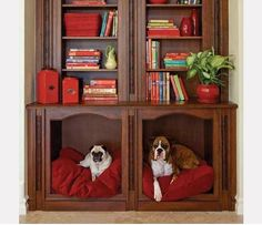 dog bed built into bookcase furniture.
