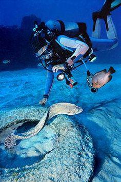 diving in Crystal blue waters