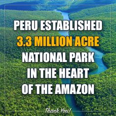 Bravo Peru! And All the Nations Who Are Working Toward Saving Our Environment!