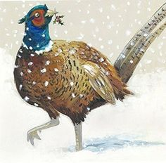 Festive Pheasant Pack of 6 Charity Christmas Cards in aid of Shelter