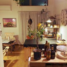 時計/観葉植物/照明/IKEA/ナチュラル/一人暮らし…などのインテリア実例 - 2015-04-27 01:00:02 | RoomClip(ルームクリップ)