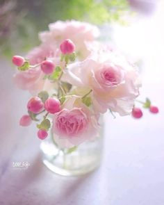 Flowers For Mom, Beautiful Rose Flowers, Beautiful Flower Arrangements, Pink Flowers, Pink Love, Pretty In Pink, Flowers For Algernon, I Believe In Pink, Rose Cottage