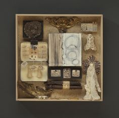 Wendy Aikin : Cabinet of Curiosities
