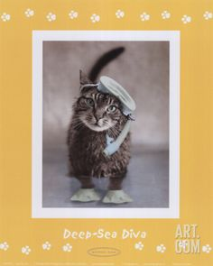 Deep-Sea Diva Art Print by Rachael Hale at Art.com