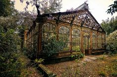 """""""The Steampunk Greenhouse"""" dating back to the last quarter of the 19th Century.  Photograph by Nicola Berlotti"""