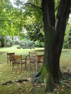 Il giardino di Palazzo Lurani Cernuschi a Milano  http://lefotodiluisella.blogspot.it/