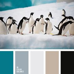 Free collection of color palettes ideas for all the occasions: decorate your house, flat, bedroom, kitchen, living room and even wedding with our color ideas. House Color Schemes, Colour Schemes, House Colors, Color Combos, Color Plomo, Beige Color Palette, Turquoise Blue Color, Silver Color, Aquamarine Colour
