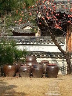A Korean garden in Autumn Korean Art, Scenery, Backyard, Traditional, Architecture, Garden, Interior, Asian, Culture