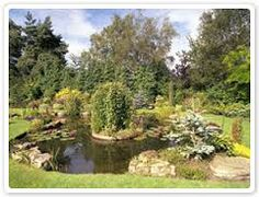 Image result for pond design