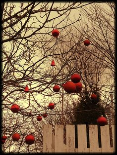 Pretty Christmas decorations
