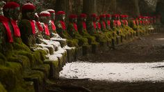 Narabi Jizo Statues - Nikko, Tochigi, Japan by Miguel Michan: These 74 stone statues of Jizo (a Bodhisattva who cares for the deceased) stretches out for 100m in a line overlooking the river. #Japan #Nikko #Kanmangafuchi_Abyss