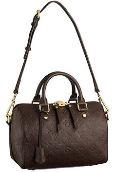 Louis Vuitton Handbags Fall-Winter 2012-2013  (20)